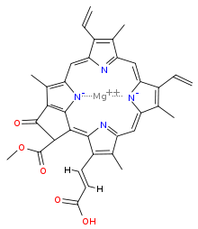 220px-Chlorophyll_c2-1.svg